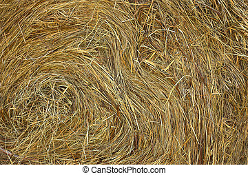 Haystack - Closeup of a haystack, individual blades can be...