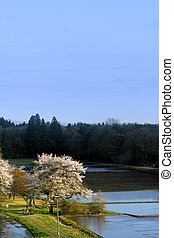 Spring Scene - Beautiful scene in Japanese farms during...