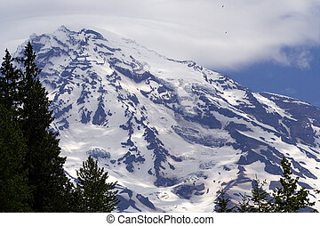 Rainier with Eagles - Eagles Soaring Above summit of Mount...
