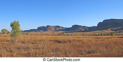 Yellow savannah and mountains, Isalo park, Madagascar,...