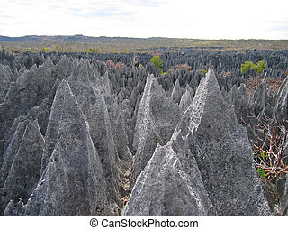 On the top, Tsingy of Bemaraha Park, Madagascar - On the top...