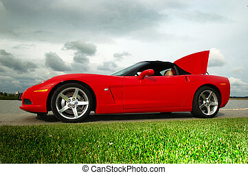 corvette_03 - red corvette car on the road with green greass...