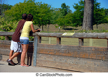 Zoo Visitors leaning on the railing