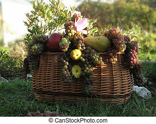 fruits in basket - summer harvests of fruits in the wicker...