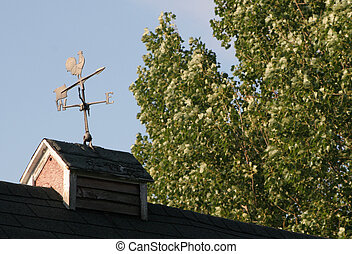 Wind Vane - An antique wind vane on an old barn roof