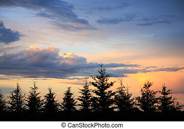 Windbreak Sunset - The sun sets as storm clouds begin to...
