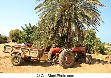 Old tractor - Old worn out tractor under a palm tree