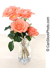 Pink rose in white background