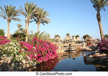 Egypt. Resort