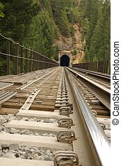 On the Rail - View of railroad trestle and tunnel from the...