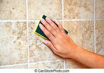 Cleaning the wall - Cleaning the shower tiled wall