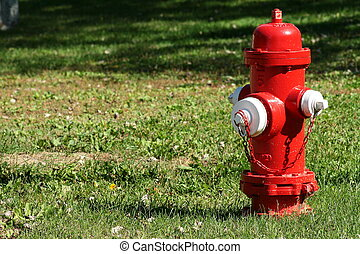 fire hydrant - a red fire hydrant, on grass