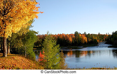 Autumn Reflections - Autumn landscape Colorful trees in...