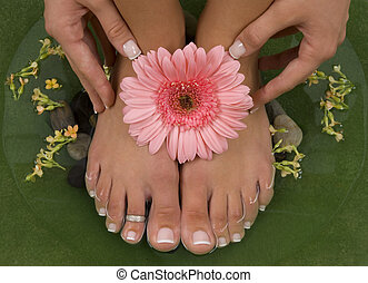 Spa Treatment - Spa treatment with elegant pink gerbera
