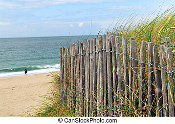 Beach fence - Ocean with sandy beach and wooden fence