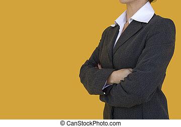 Elegant consultant - a elegant consultant standig with her...