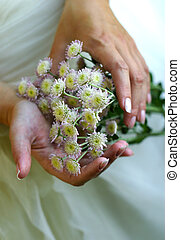 Chrysanthemums - Bouquet from small chrysanthemums in female...
