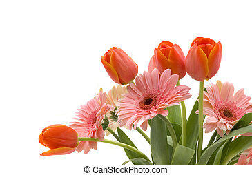 Spring Flowers - A bouquet of daisy gerberas and tulips