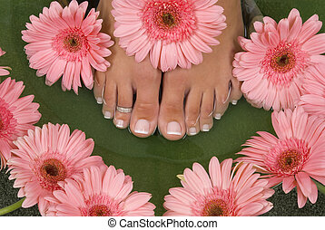 Spa Treatment - Spa treatment with elegant pink gerberas