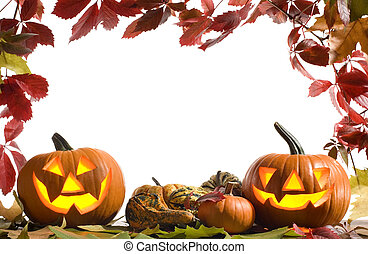 halloween pumpkins on white background with fall leaves...