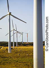 wind turbine - environmental conservation: wind turbines in...