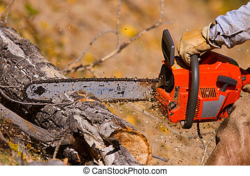 logging - A  lumberjack working with a chainsaw