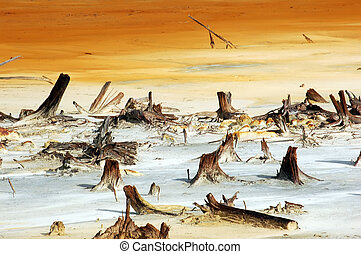 Global Warming - A picture that depicts what Global Warming...