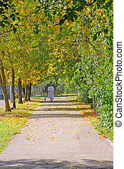 autumn alley - old woman faraway on the autumn alley...