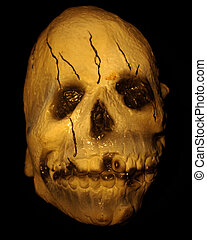 Skull - Halloween image - Isolated closeup of a skull...