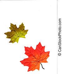Green Leaf orange Leaf - Fall design