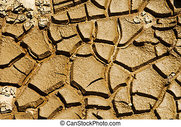 Cracked soil - Dried soil cracking under the scorching sun