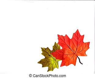 Leaves - autumn design