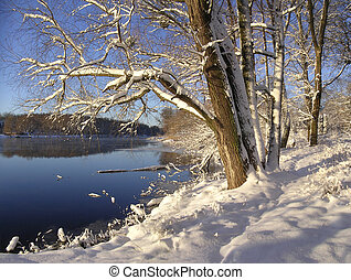 Winter landscape - Winter landscape near the river
