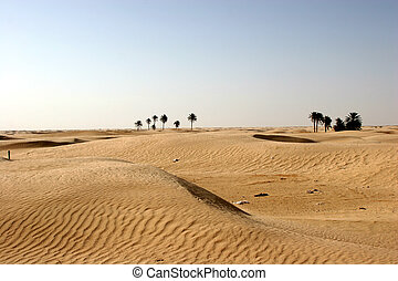 Sahara Desert, popular travel destination.