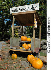 Roadside Pumpkin Stand - Pumpkins for sale at a roadside...