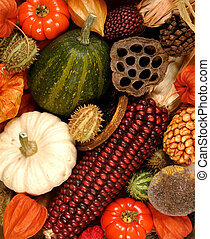 Autumn decorations - A background image of autumn seasonal...