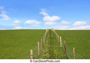 Rural Fencing - Double wooden post and wire fence line...