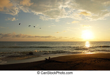 Hermosa Beach, Costa Rica - Sunset at Playa Hermosa, Costa...