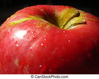 red apple 1 - nice red apple