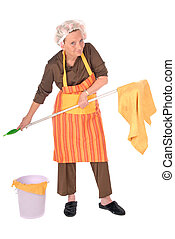 Cleaning housewife