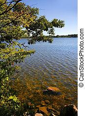 Scenic Lake Shore
