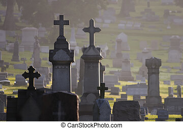 Misty Cemetary - Misty cemetary at dawn featuring headstones...