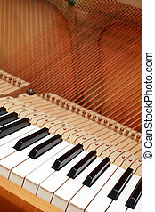 Piano - Strings of open piano