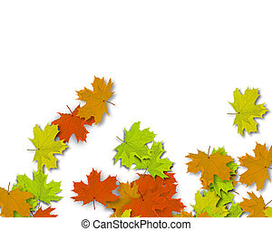 Autum Background with colorful fall leaves falling down from...
