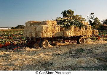Hay Wagon - Hay wagon full of hay