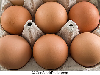 brown egg carton - a close up on a carton of brown egg