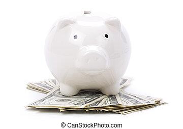 Piggy Bank and dollars close up shot