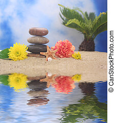Stones on Beach With Flowers and Sea Shells With Blue Sky