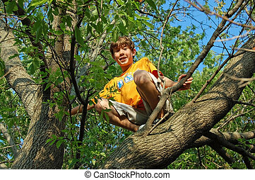 Boy Sitting Up in Tree - Looking up at a boy who is smiling...