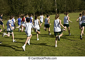 Cross Country Runners Leave the Starting Line - Cross...